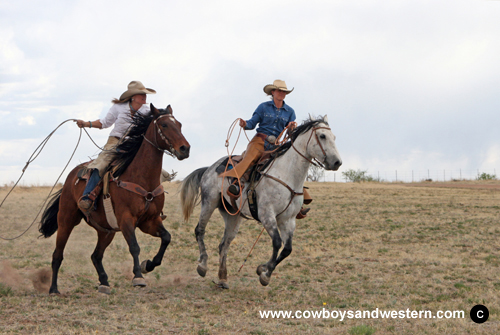 Image result for Cowgirls and horses